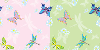 Summer butterfly seamless in two variants Royalty Free Stock Images