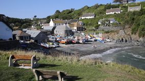 Summer Cadgwith Cornwall England UK on the Lizard Peninsula stock video