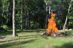 Summer Camp. A background of a campfire in a green forest to illustrate a summer camp Stock Image