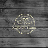 Summer camp badges logos and labels for any use. On wooden background texture. EPS10 royalty free stock photos
