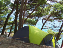 Summer camp on the beach. Camping under the trees on the croatian beach Royalty Free Stock Photography