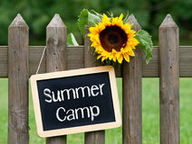 Summer Camp - chalkboard with text and sunflower. In the garden royalty free stock photos