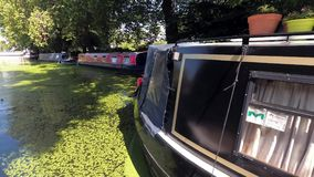 Summer canal with barges in Little Venice stock video footage