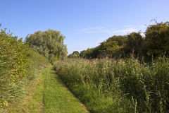 Summer canal towpath Stock Photography