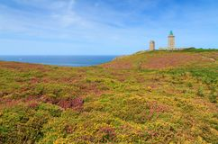 Summer at Cap Fréhel Brittany. Beautiful landscape view of the cliffs at Cap Fréhel in Brittany, France, with its lighthouses and moorland with vibrant heather Royalty Free Stock Photos