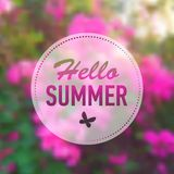 Summer card with flowers Stock Photos