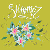 Summer card on green background with flowers.  Floral banner. Summer banner illustration. Summer banner design. Summer season, sum Royalty Free Stock Photo