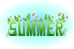 Summer card, lettering,. Wildflowers and grass. Vector illustration Stock Photos