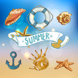 Summer Card with Sea Shells, Anchor, Lifeline Royalty Free Stock Photos