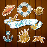 Summer Card with Sea Shells, Anchor, Lifeline Royalty Free Stock Image