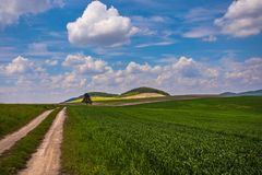 Summer  Carpathian landscape Stock Photography