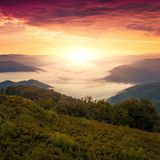 Summer Carpathian landscape Royalty Free Stock Image