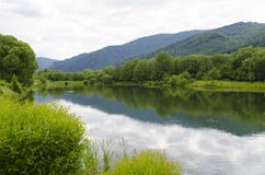 Summer Carpathian landscape with Skole lake and forest trees on the background of mountains. Nature reserve. Natural background. U. Kraine Royalty Free Stock Image