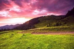 Summer Carpathians  sunrise landscape Royalty Free Stock Photography