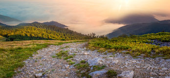 Summer Carpathians  sunrise landscape Stock Photography
