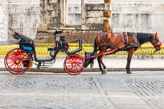 Summer Carriage. A horse attached to a carriage with red wheels, parked under a monument in Rome is waiting for tourists Royalty Free Stock Image