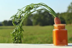 Summer carrot drink. One kitsch smoothie made from carrot with carrot stock images