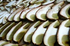 Summer cep mushroom Boletus reticulatus hat sliced in detail Stock Photography