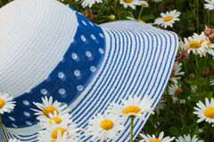 Summer , chamomile, straw hat , sunny day Royalty Free Stock Images