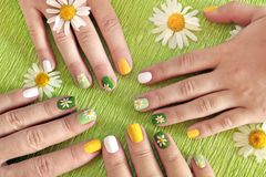 Summer cheerful manicure. The same design of the nails of the mother and daughter with daisies. Summer cheerful manicure on a green background stock photo