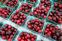 Summer cherries. Cartons of freshly picked from-the-farm cherries are shown Stock Photography