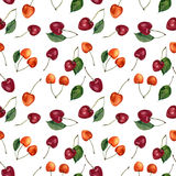 Summer cherry berries watercolor seamless pattern. Watercolor cherries isolated on white background. For design, textile Royalty Free Stock Photography