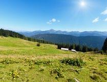 Summer mountain sunshiny view Carpathian, Ukraine. Summer Chornohora mountain ridge sunshiny view from Vesnjarka plateau Carpathian, Ukraine Royalty Free Stock Photo