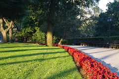 Summer city park Royalty Free Stock Images