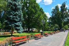 Summer city park, bright sunny day, trees with shadows and green grass stock image