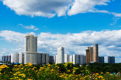 Summer cityscape. Summer Moscow cityscape with flowers at foreground Stock Images