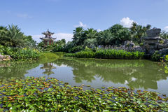 Summer classical Chinese garden Stock Photos