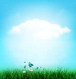 Summer, Cloud, Sky, Grass, Flower And Butterflies. Summer Background With Grass, Flower And Butterflies Royalty Free Stock Photo