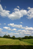 Summer clouds. Meadows and clouds on a deep blue summer sky stock photography