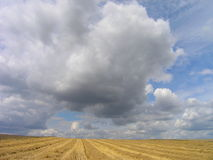 Summer clouds. Over the field - Poland royalty free stock photo