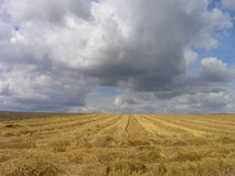 Summer clouds. Over a field - Poland royalty free stock photo