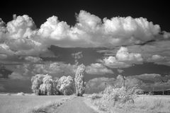Summer clouds over fields Royalty Free Stock Images
