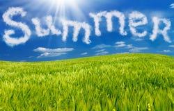Summer Stock Photo