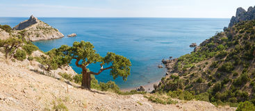 Summer coastline panorama Royalty Free Stock Image