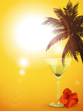 Summer cocktail background portrait Stock Image
