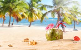 Summer coconut cocktail on the beach. Summer coconut cocktail on tropical beach Royalty Free Stock Image