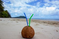 Summer coconut cocktail with 2 straws on Cape Tribulation in Daintree National Park in the far tropical north of Queensland,. Summer coconut cocktail with 2 stock photo