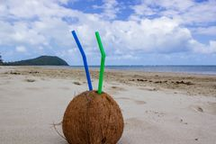 Summer coconut cocktail with 2 straws on Cape Tribulation in Daintree National Park in the far tropical north of Queensland,. Summer coconut cocktail with 2 stock photos