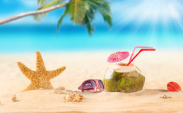 Summer coconut cocktail on tropical beach. Stock Image