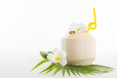Summer coconut tropical drink Royalty Free Stock Photos