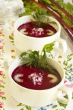 Summer cold beet soup Stock Photography