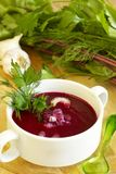 Summer cold beet soup Stock Images