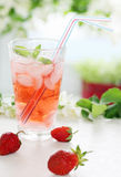 Summer cold beverage Royalty Free Stock Photography
