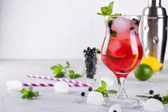 Summer cold drink with blueberry, mint lemon and ice stock photography