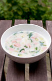 Summer cold russian soup Royalty Free Stock Photo