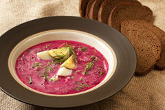 Summer cold soup with beet, cucumber and egg Royalty Free Stock Image